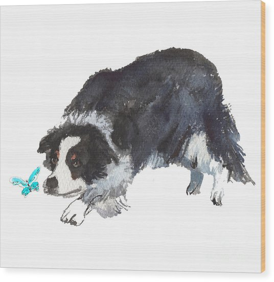 The Collie And Blue Butterfly Wood Print