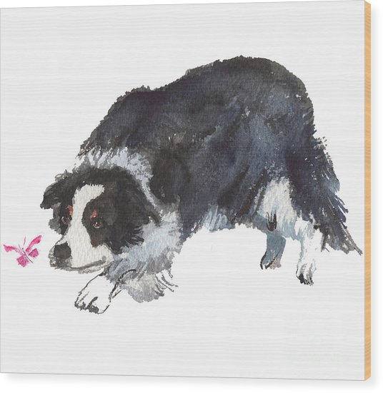 The Collie And Pink Butterfly Wood Print