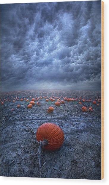 Wood Print featuring the photograph The End Was Left Behind by Phil Koch