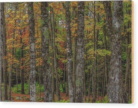 The Fall Woods Wood Print