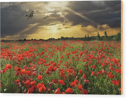 Wood Print featuring the photograph The Final Sortie Wwi Version by Gary Eason
