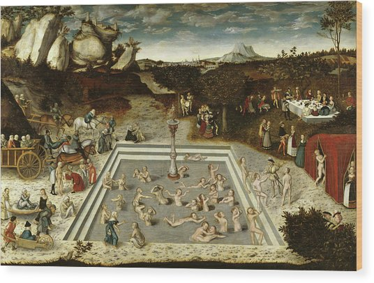 The Fountain Of Youth, 1546 Wood Print