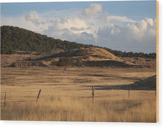 The Golden Hour In Utah Wood Print