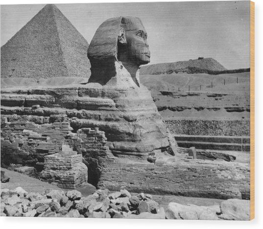 The Great Sphinx Wood Print by Hulton Archive