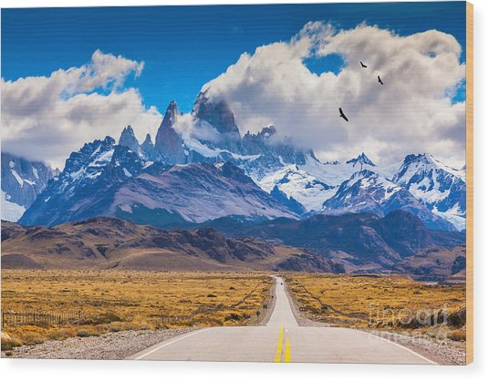 The Highway Crosses The Patagonia And Wood Print