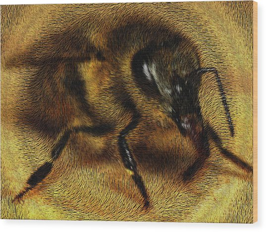 Wood Print featuring the digital art The Killer Bee by ISAW Company