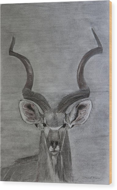 The Kudu Wood Print
