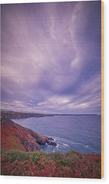 The Lizard Point Wood Print