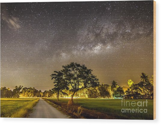 The Milky Way And The Tree Stand Alone Wood Print by A.aizat
