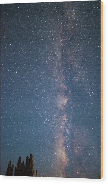 The Milky Way In Arizona Wood Print