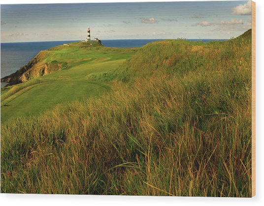 The Old Head Golf Links, Kinsale Wood Print