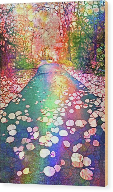 The Path Where Rainbows Meet Wood Print