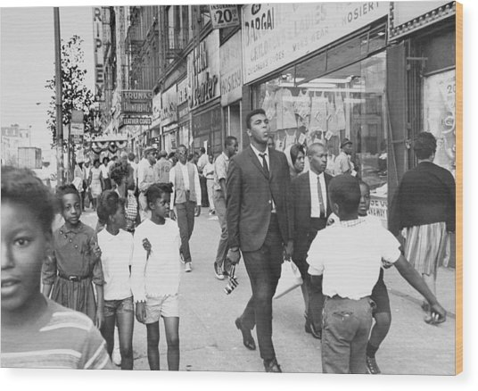 The Pied Piper Of Harlem, Cassius Clay Wood Print by New York Daily News Archive
