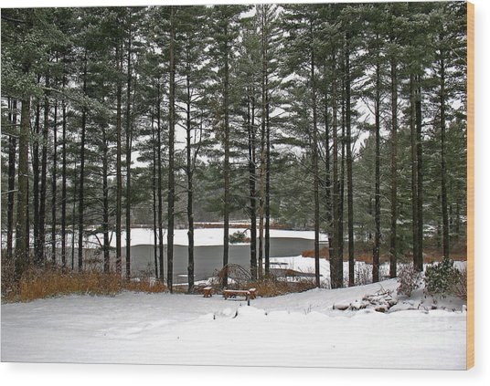 Wood Print featuring the photograph The Pond by Patti Whitten