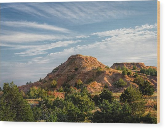 Wood Print featuring the photograph The Red Hills by Scott Bean