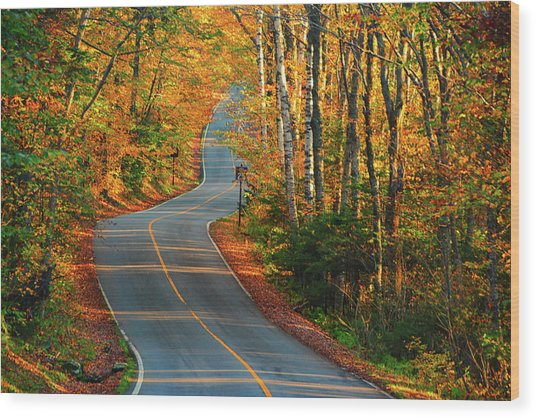 Wood Print featuring the photograph The Road Up Mount Greylock by Raymond Salani III