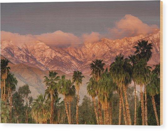 The San Jacinto And Santa Rosa Mountain Wood Print by Danita Delimont