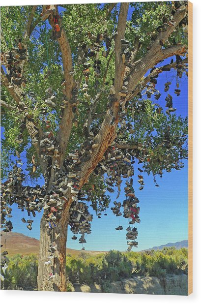 Wood Print featuring the photograph The Shoe Tree by David Bailey