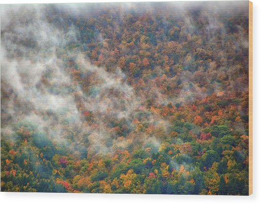 Wood Print featuring the photograph The Shoulder Of Greylock by Raymond Salani III