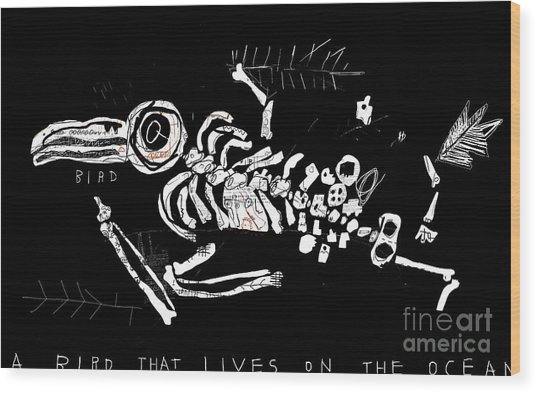 The Skeleton Of A Bird Which Ate Wood Print