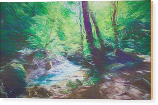 The Stream In The Forest Wood Print