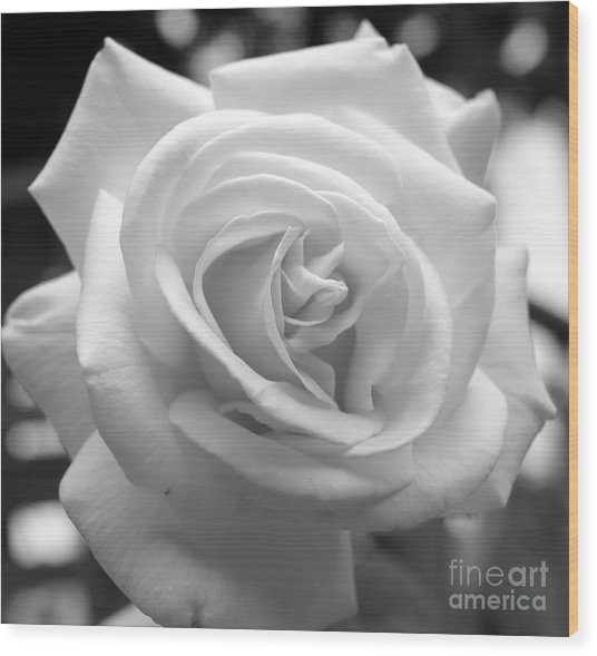 The Subtle Rose Wood Print