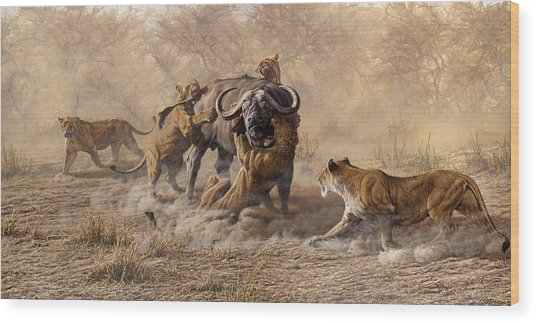 Wood Print featuring the painting The Take Down - Lions Attacking Cape Buffalo by Alan M Hunt