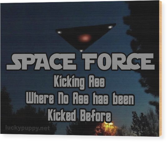 The United States . Space Force Wood Print