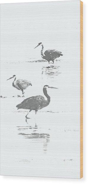 Three Blue Herons Wood Print