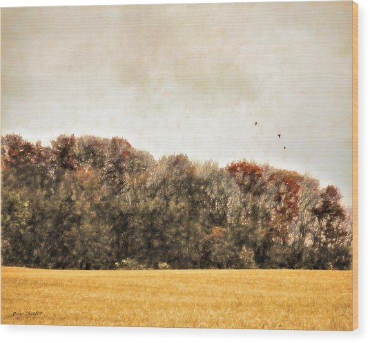 Three Crows And Golden Field Wood Print