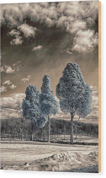Three Kings Wood Print