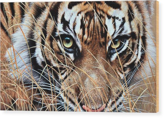 Wood Print featuring the painting Tiger Eyes By Alan M Hunt by Alan M Hunt
