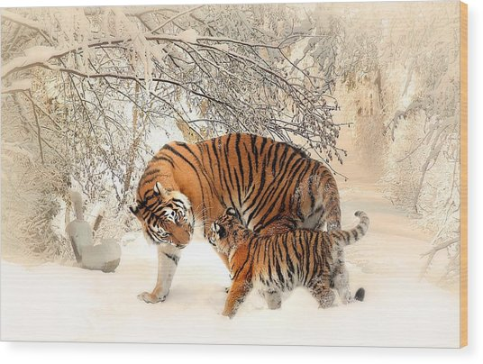 Tiger Family Wood Print