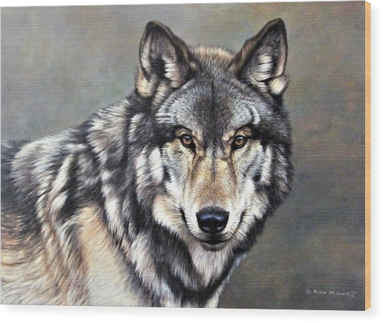 Timber Wolf By Alan M Hunt Wood Print