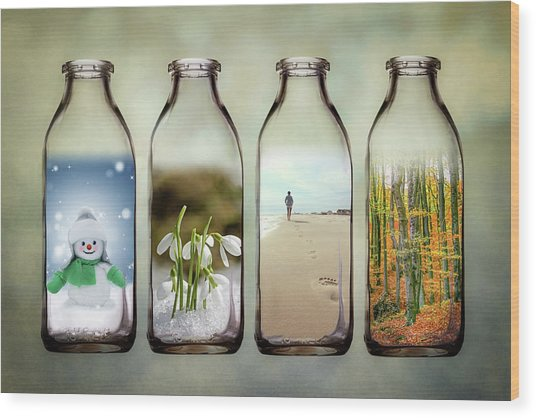 Time In A Bottle - The Four Seasons Wood Print
