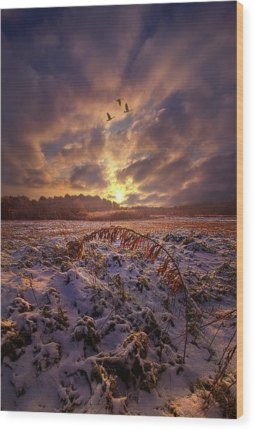 Wood Print featuring the photograph Times They Changed by Phil Koch