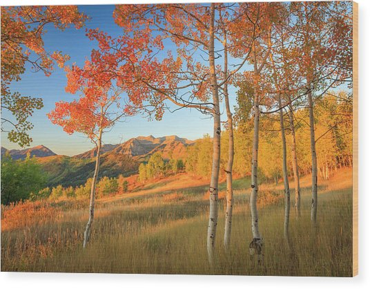Timp With Fiery Aspens Wood Print