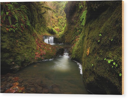 Tire Creek Canyon Wood Print