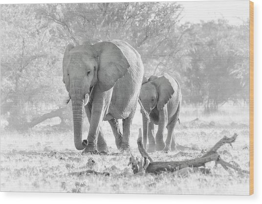Wood Print featuring the photograph To The Watering Hole by Rand