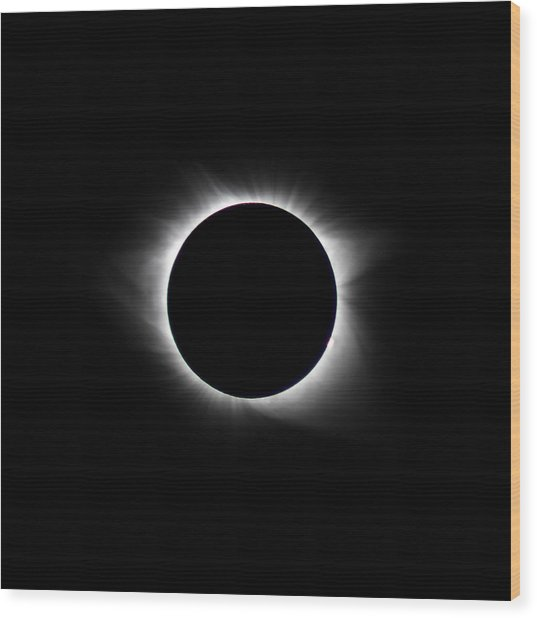 Totality  Wood Print by Christine Buckley