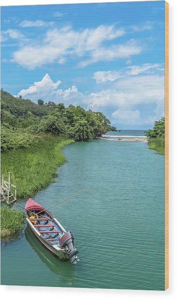 Tour Boat In Jamaica Wood Print