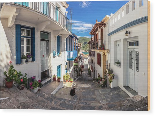 Town Of Skopelos Wood Print