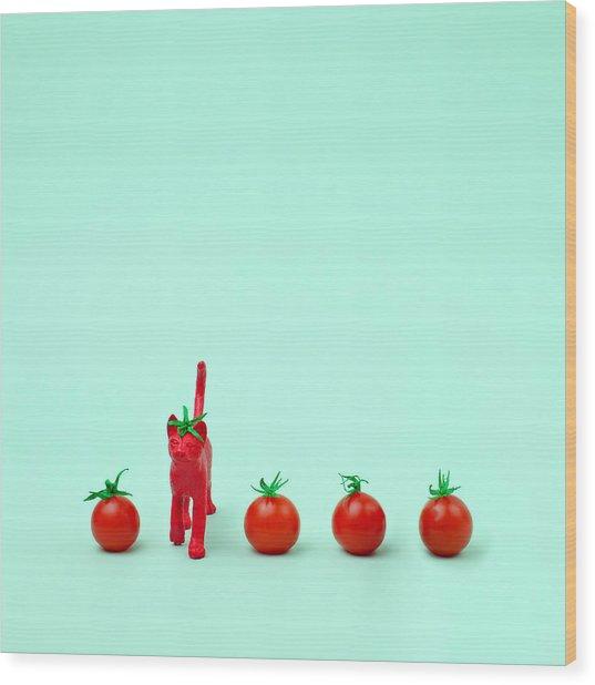 Toy Cat Painted Like A Tomato In Row Wood Print by Juj Winn