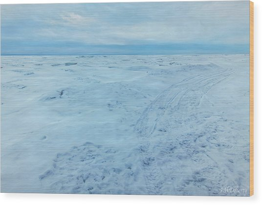 Tracks On To The Lake Wood Print