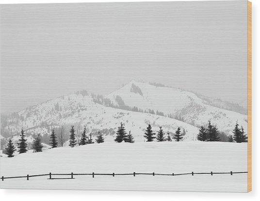 Tree Fence Wood Print by Dana Klein