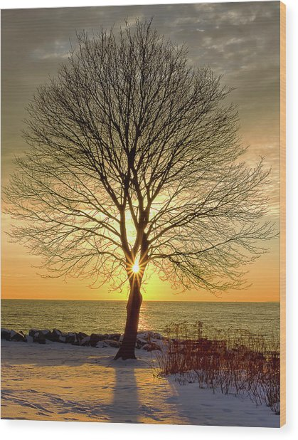 Wood Print featuring the photograph Tree Framed Sunrise New Hampshire by Nathan Bush