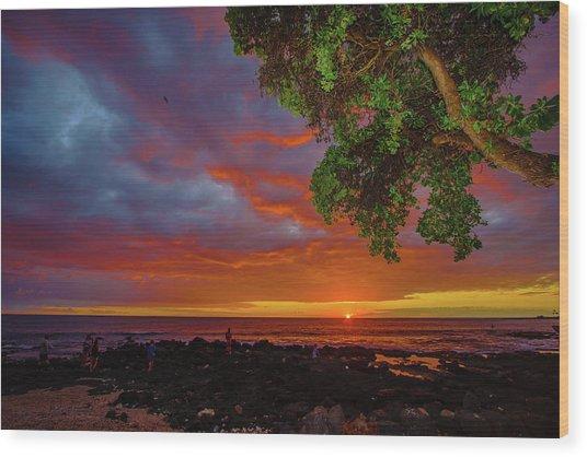 Tree  Sea And Sun Wood Print