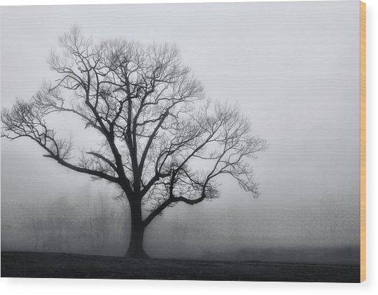 Trees In Fog # 2 Wood Print