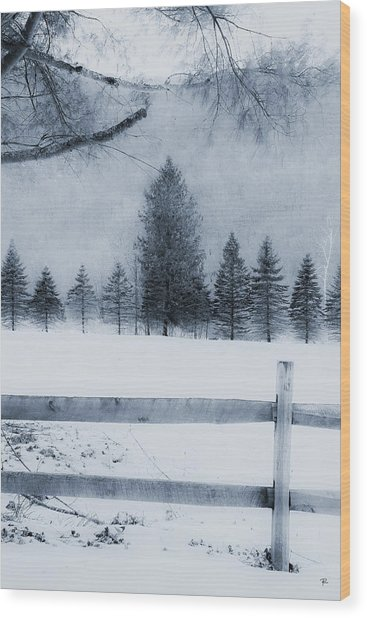Trees In Frost Valley Wood Print