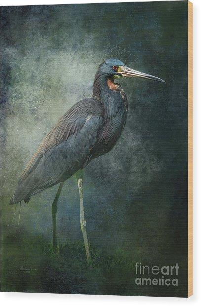 Tricolor Portrait Wood Print